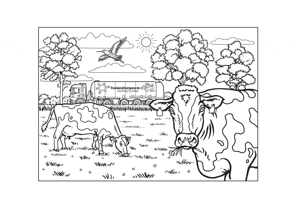 Colouring page Cows in the meadow - celebrating Friesland @150 years!