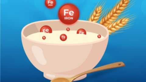 Iron Fortified Infant Cereals – The Best Way To Incorporate Iron In A Baby's Diet?
